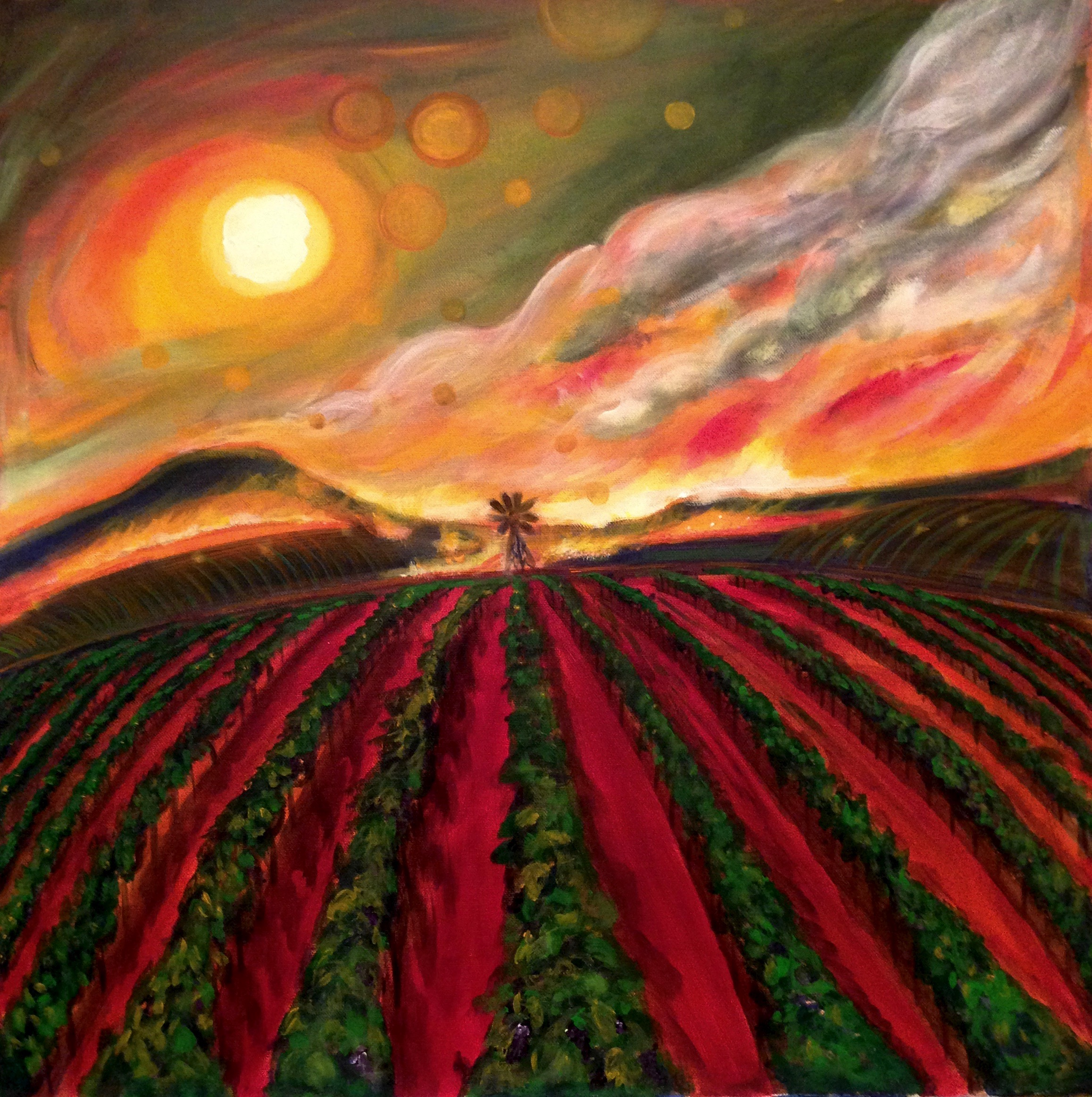 Vinyards Burning 24x24 SOLD